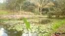 Construction des étangs