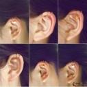 Petites boucles d'oreilles